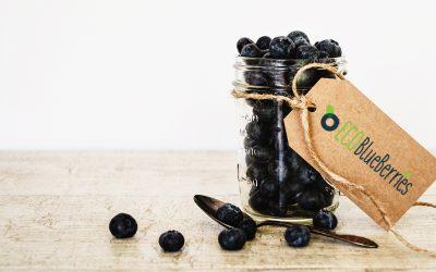Καλοκαιρινή απόλαυση: Συνταγή γλυκό κουταλιού μύρτιλο