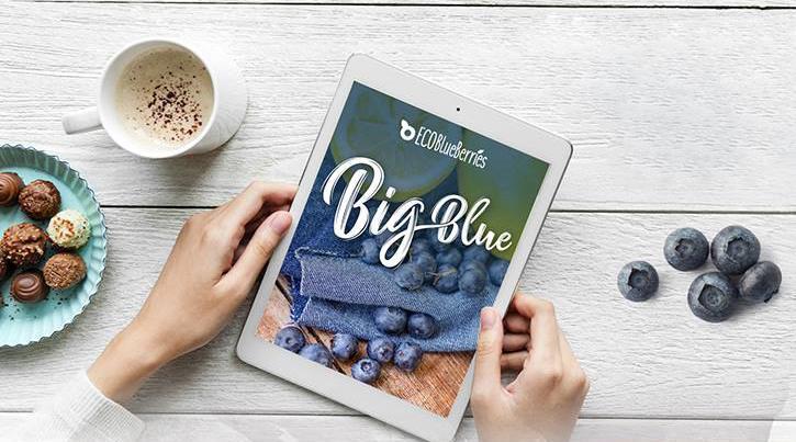 Γνωρίζεις τί είναι τα μύρτιλα Big Blue;