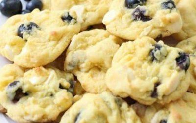 Μπισκότα με μύρτιλα